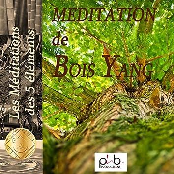 Les relaxations - Méditations des 5 éléments l'arbre bois Yang Yozykaz