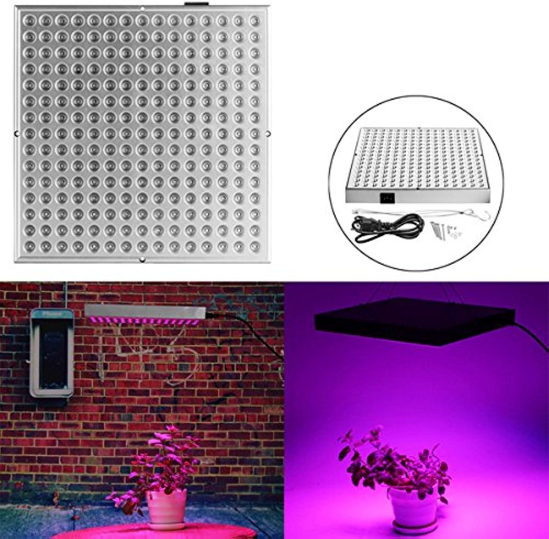 DADEQISH 45W 225 LED Full Spectrum wachsen helle Lampe für PflanzenBlaume AC85-265V Innenlicht (Farbe   AU Plug) B07NV8Q1V9 | Zu einem erschwinglichen Preis