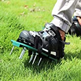Wistar Lawn Aerator Shoes Metal Buckles and 3 Straps - Heavy Duty Spiked Sandals...
