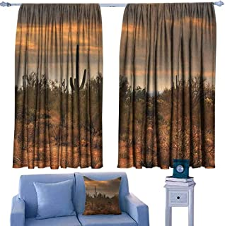 Mannwarehouse Saguaro Bedroom Balcony Living Room Curtain Dramatic Shady Desert View with a Storm Cloud Approaching Western Arizona Photo for Living, Dining, Bedroom (Pair) 55