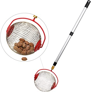 Cchainway Rolling Nut Harvester Ball Picker Stainless Steel Adjustable Nut Gatherer Adjustable Collect Walnuts, Pecans, Crab Apples, Nerf Darts and Small Fruit Objects 1'' to 3'' in Size (1 Pack)
