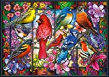 Buffalo Games - Amazing Nature Collection - Stained Glass Songbirds - 500 Piece Jigsaw Puzzle