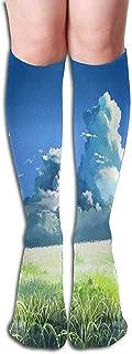 Calcetines Miyazaki Wallpapers Vintage Womens Stocking Holiday Sock Liquidación para niñas