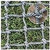 登山保護ネット、屋外フィットネス登る子ツリーハウスネット 子供用スイングラダーネット 大人、固定貨物重いデッキ車のネットをロード 庭の障壁、競馬場の柵の網 手すり階段バルコニーネット (Size : 6*6M(20*20ft))