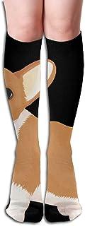 winterwang, Welsh Corgi - Calcetines altos para mujer