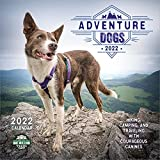 Adventure Dogs 2022 Wall Calendar: Hiking, Camping, and Traveling with Courageous Canines