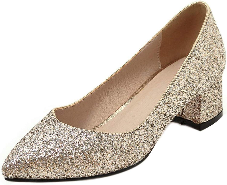 AicciAizzi Women Fashion Glitter Mid Heel Court shoes