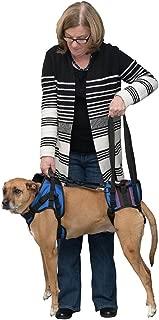 dog lift harness canada