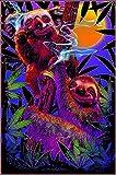 High In The Bush Sloth/Koala Non-Flocked Blacklight Poster 24.5' x 36.5' Laminated