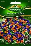 Hornveilchen Sorbet Orange Due - Viola cornuta QLB Premium Saatgut Blumen einjährig