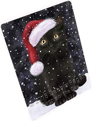 Black cat santa hat merry christmas holiday cat lover frame soft fleece blanket