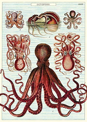 BCTS Vintage Octopus Octopod Poster Wrapping Paper Home Decor Art Wall Decor Metal Sign 8X12 inch