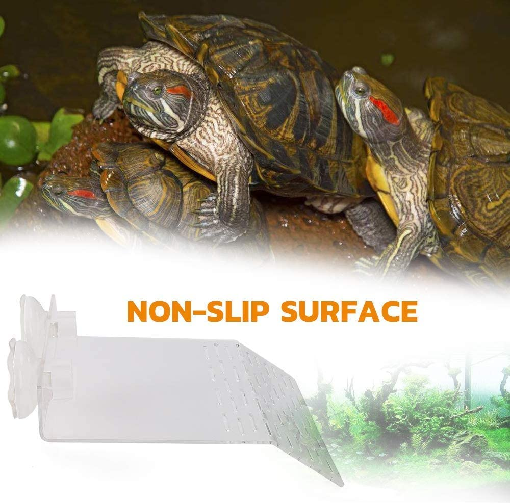 Payanwin Large Size Acrylic Plastic Turtle Resting Terrace, Fish Tank Aquarium Tortoise Basking Platform with 2PCS Suction Cups Color01