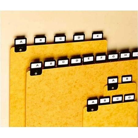Rexel 3021900 ValRex Lot de 25 Intercalaire portrait A4