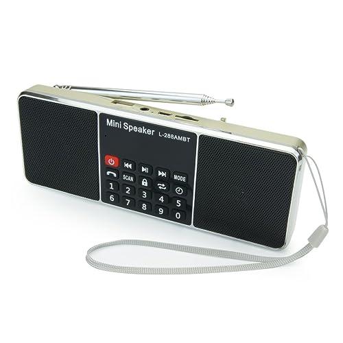PRUNUS Portable AM/FM/Bluetooth/mp3/USB/SD/AUX Radio de Antena Larga con Altavoz magnético Doble, función de Temporizador de Apagado automático. Almacena Estaciones automáticamente.