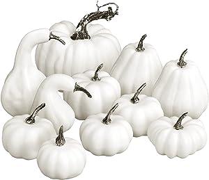 HiPatio Artificial Pumpkins Decoration,11 Pcs Assorted Sizes Fall Harvest Pumpkins White Fake Pumpkins for Autumn Decor Thanksgiving Halloween Decorations