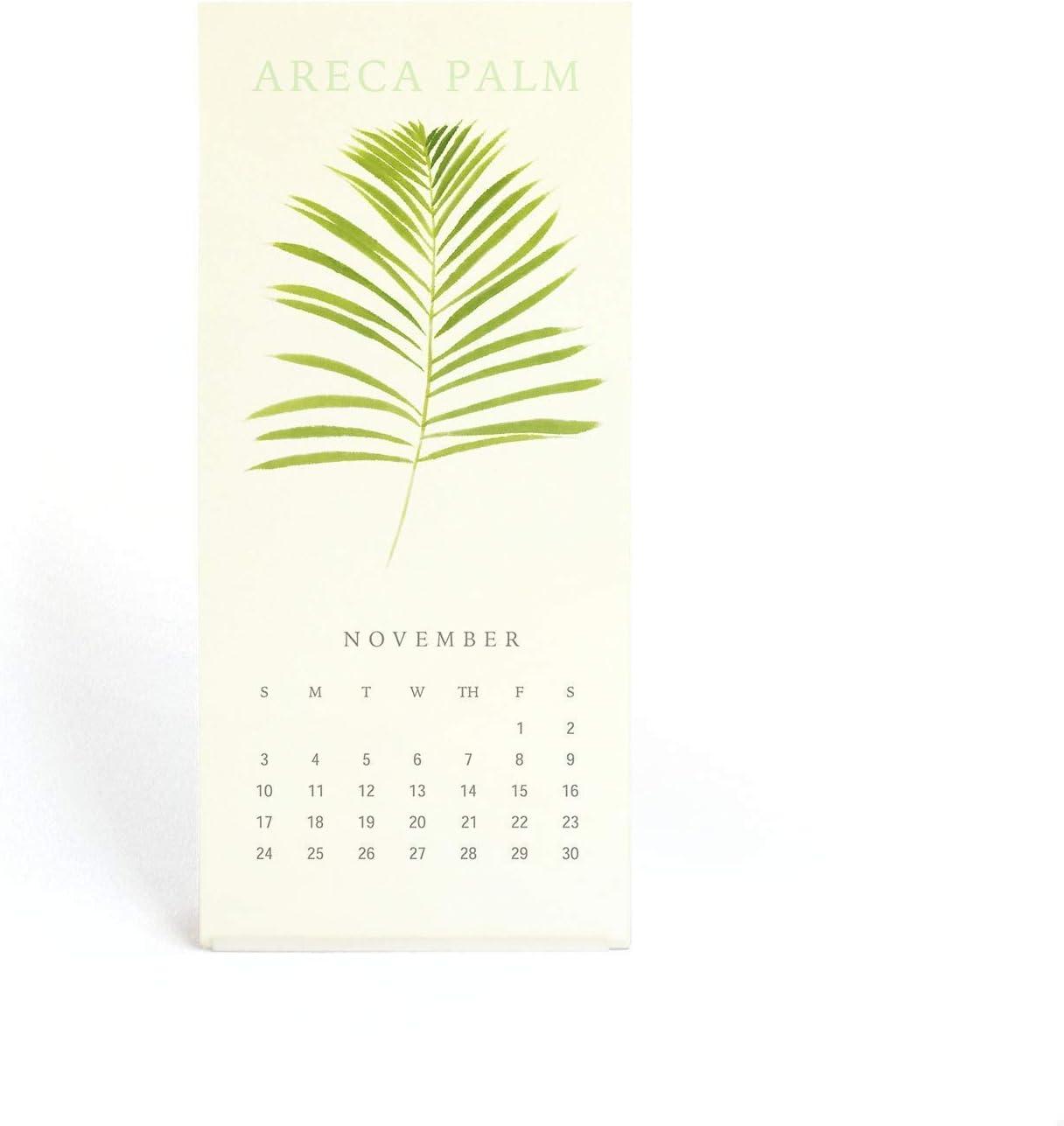 """The Silence Of Plants""Art Print - 2020 Calendar Max 47% OFF Mini Desk Trust 3.5"
