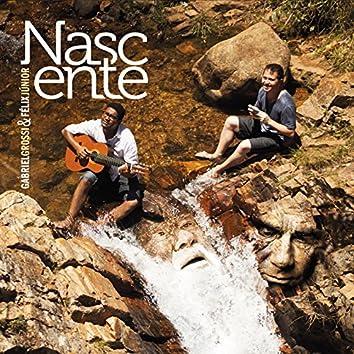 Nascente: A Música de Hermeto e Guinga