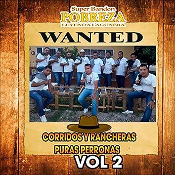 Corridos Y Rancheras Puras Perronas Vol 2