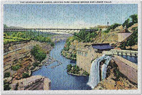 Rochester NY   Genesee River Gorge Park Avenue Bridge Lower Falls View 18598 (rompecabezas de 1000 piezas para adultos)