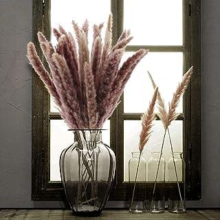 d/écoration dint/érieur parfait pour photographie /& mariage Blanc Bouquet d/'herbes de la Pampa s/éch/ée Amae