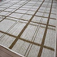 ラグ カーペット 2畳 二畳 絨毯 アース製薬 防カビ 防ダニ 防虫 抗菌 洗える じゅうたん 日本製 折り畳み 正方形 廃盤ティラナ 江戸間2帖 176×176cm