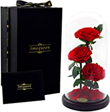 Smequeen Preserved Rose Never Withered Roses Flower in 12.5''x 6''Glass Dome, Gift for Valentine's Day Anniversary Birthday (Red 2)