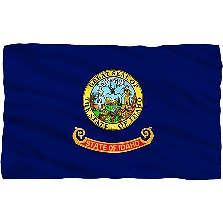 Amazon Com Idaho State Flag Fleece Throw Blanket 36 X58 Home Kitchen