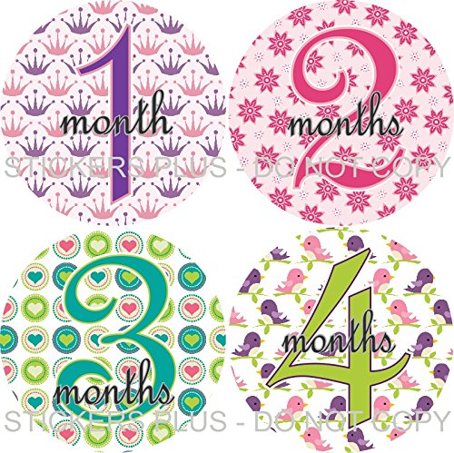 Baby Girl Month Stickers Monthly Baby Milestone Stickers All Different Princess Crown Flower Heart Bird and More