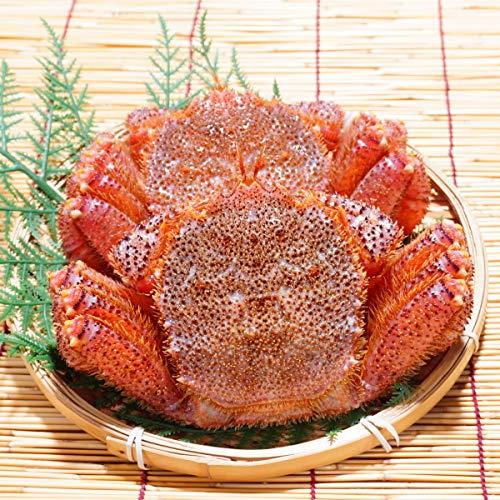 かにのマルマサ 北海道産 活毛蟹 1kg詰2尾セット 冷蔵品