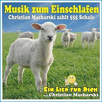 Musik zum Einschlafen! Christian Macharski zählt 555 Schafe