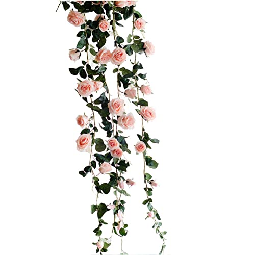 Flower Vine Amazon.com