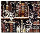 ZXlDXF Pintura por números para adultos y niños, principiantes, pintura de gato, por números, para adultos, pintura acrílica por números, para adultos, 40,6 x 50,8 cm, sin marco