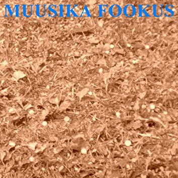 Muusika Fookus