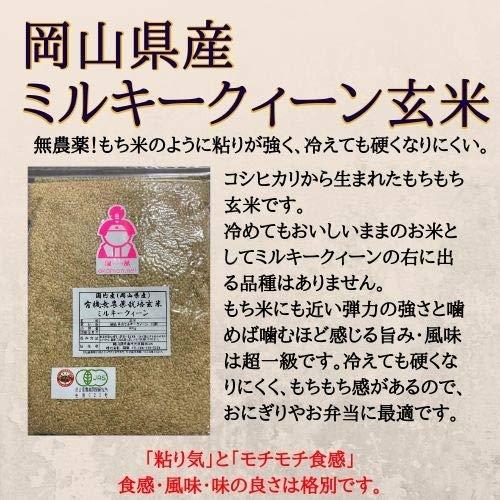 無農薬ミルキークイーン玄米900g令和元年岡山県産