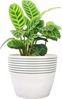 LA JOLIE MUSE Indoor Planter Flower Pot - Plant Pots for Indoor and Outdoor Plants, Contemporary Chic Planter with Stripe ...