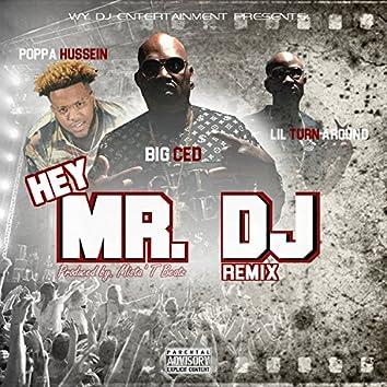 Hey Mr. DJ  (Remix)