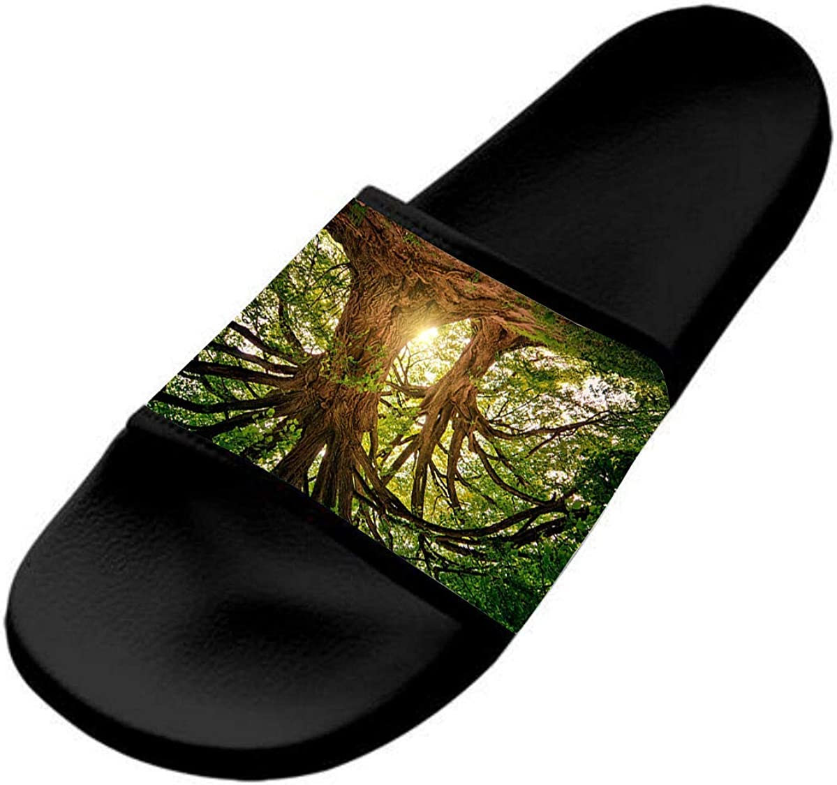 A Tree Against The Light Casual and Stylish Sports Slippers for Kids are Flat and Comfortable