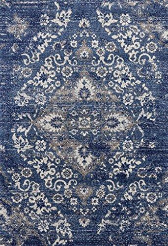 4620 Distressed Denim 5x7 Area Rug Carpet Large New