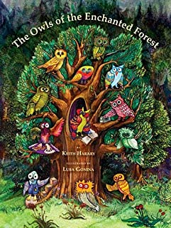 The Owls of the Enchanted Forest