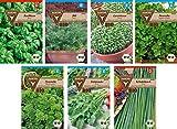 Frankonia-Samen / Bio-Kräutersamen / Bio-Sortiment / 7 Sorten
