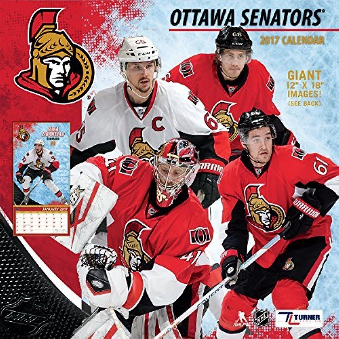インポート仮定する南Turner Licensing Sport 2017 Ottawa Senators Team Wall Calendar 12X12 (17998011950) [並行輸入品]
