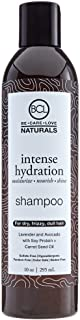 BCL Naturals Intense Hydration Shampoo, 10 Ounce