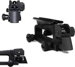 Hygoo Dual Aperture Rear Iron Sight Windage/Elevation Adjustment with Detachable Picatinny Rail Mount Combo