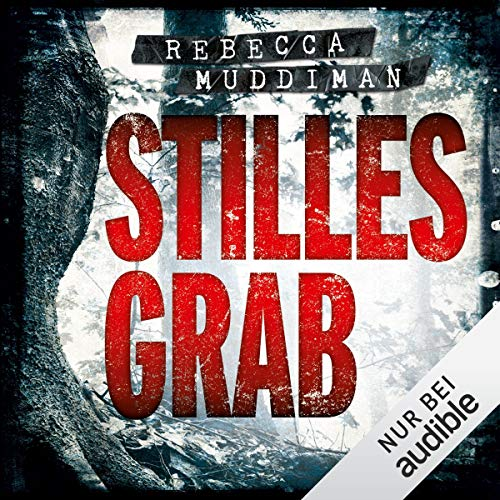 Stilles Grab cover art