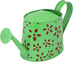 Rvold Hand Painted Rust Free Metal Watering Can for Gardening Plants 2.5 Ltrs Capacity (Green)