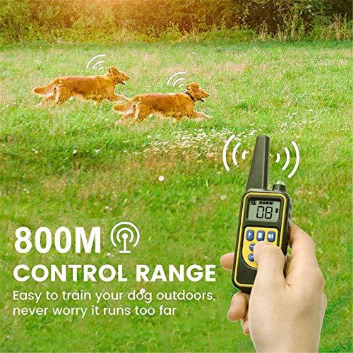 Crzmtph Geeignet für kleine, mittlere und große Hunde,Sicherheit + wasserdicht + LED + 800M Fernbedienungsabstand