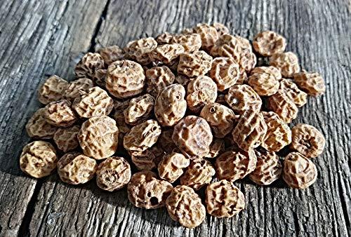 100 keimfähige Erdmandel Knollen, Cyperus esculentus, Tigernuss Samen, Chufa, Arab. Zuckerwurzel