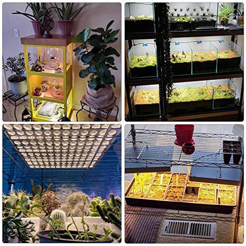 CXhome 2Pcs 75W LED Coltivazione Indoor Grow Light per Grow Box/Idroponica Kit/Serra/Interno Veg Fiore Crescita