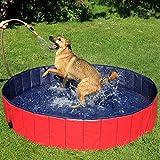 Zoom IMG-2 dibea piscina per cani pieghevole